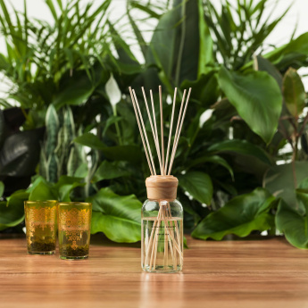 Scented Space Green Tea Reed Fragrance Diffuser - 200 ml