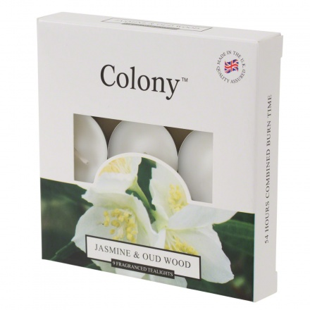 Colony Jasmine & Wood Tealights - Set of 9